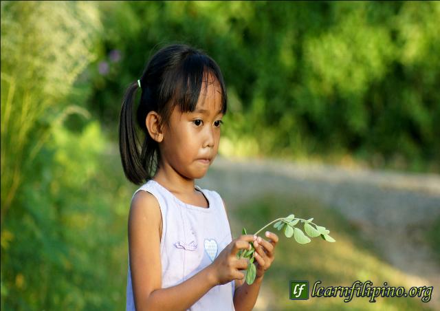 malunggay girl 1-8-31-15