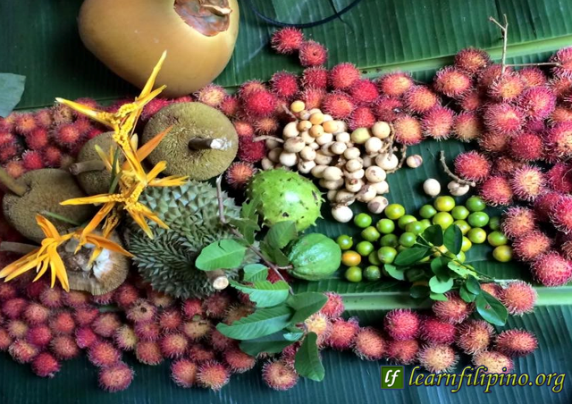 Typical fruits you can find in the Philippines are lanzones, rambutan, durian, jackfruit, coconut, guava, and mangoes. - Photo by Cecilio Jala Mandin, Manila, Philippines