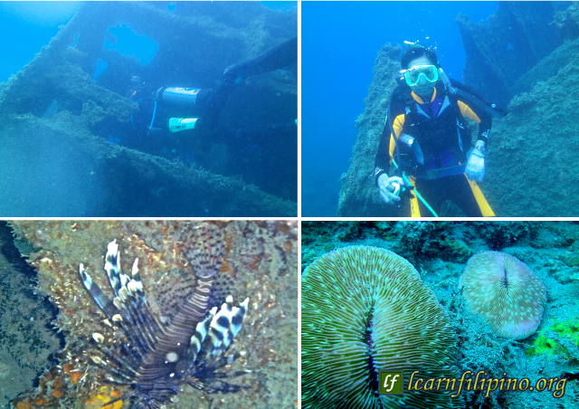 diving the Ilocos Norte ocean waters3-8-31-15