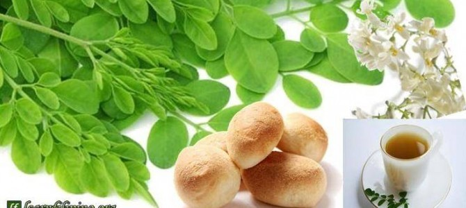 Moringa – an Icon for Most Filipinos