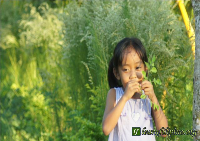 malunggay girl 2-8-31-15
