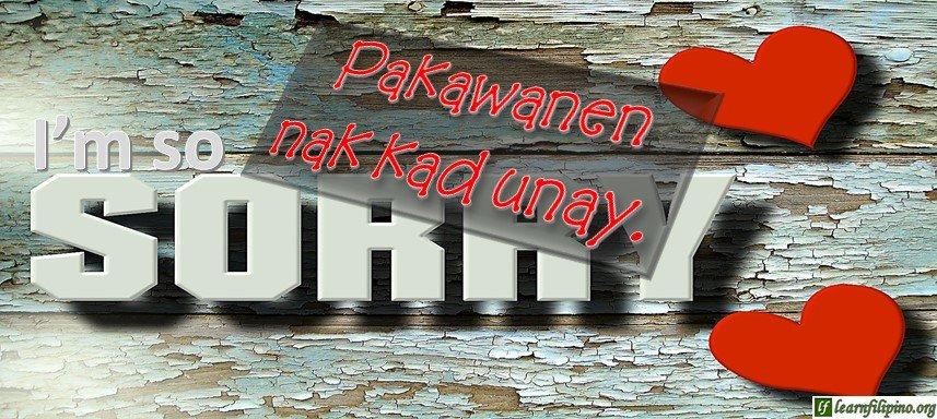 Ilocano Translation - I'm so sorry. - Pakawanen nak kad unay.