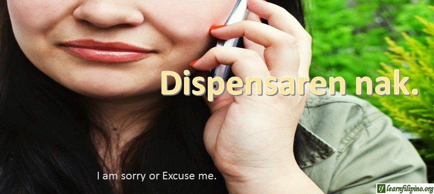 Ilocano Translation - Excuse me. - Dispensaren nak.