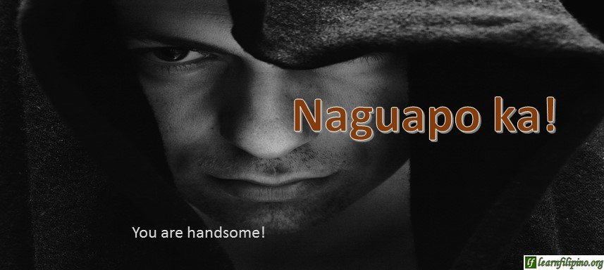 Ilocano Translation - You are handsome! - Naguapo ka!