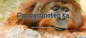 Ilocano Translation - I am thinking of you. - Panpanunoten ka.