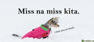 Tagalog Translation - I miss you so much. - Miss na miss kita.