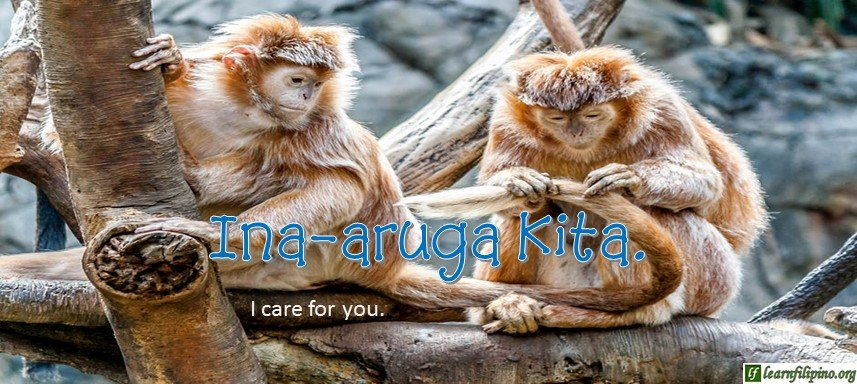 Tagalog Translation - I care for you. (2) - Inaaruga kita.