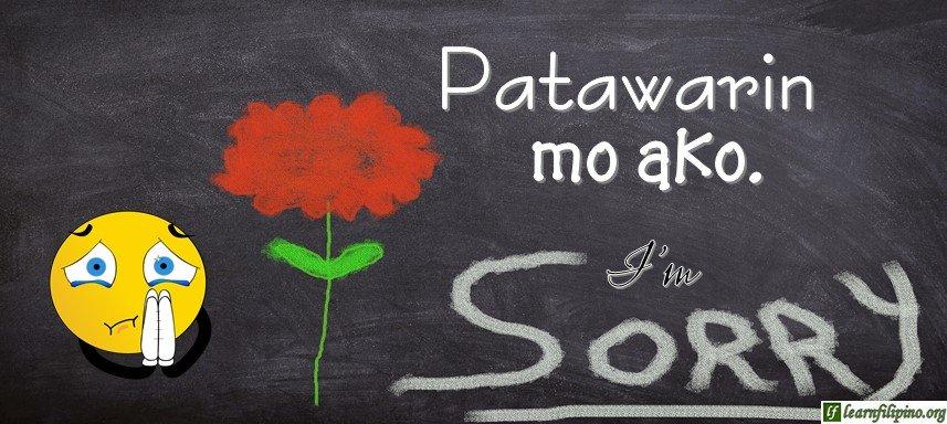 Tagalog Translation - I'm sorry. - Patawarin mo ako.
