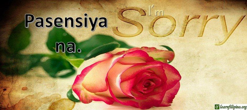 Tagalog Translation - I'm sorry. (2) - Pasensiya na.