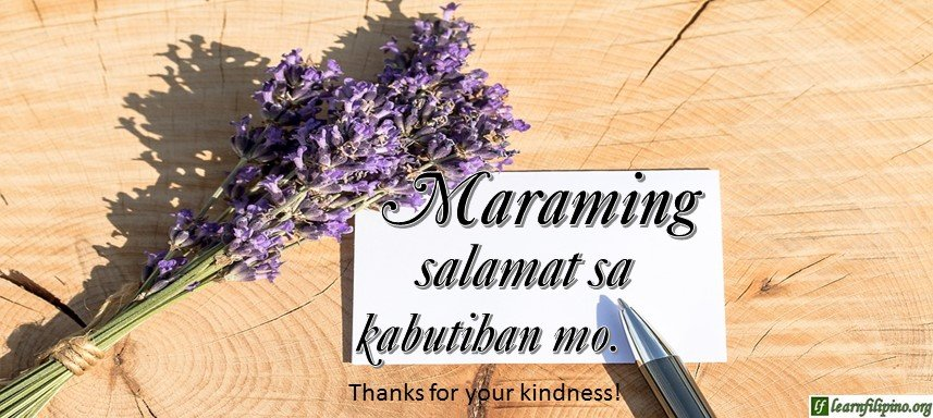 Tagalog Translation - Thanks for your kindness! - Salamat sa kabutihan mo!