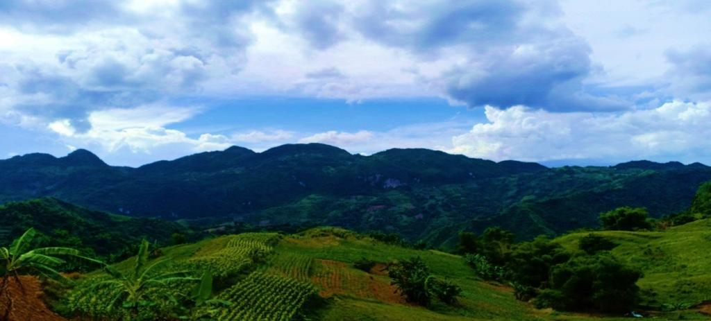 A landscape view from Nerisville, Cebu City